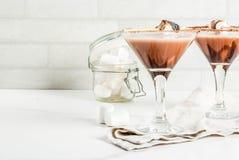Smores brindados martini fotografia de stock