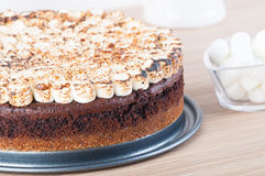 Smores cake. Freshly bake smores cake with toasted marshmallows on top stock image