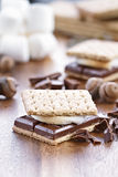 Smores ed ingredienti Immagine Stock