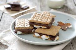 Smores Royalty Free Stock Image