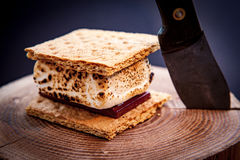 Smores on a log. With a knife Stock Photography