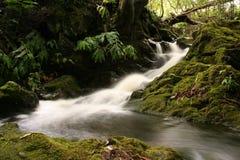 Smothness van het water Royalty-vrije Stock Foto's