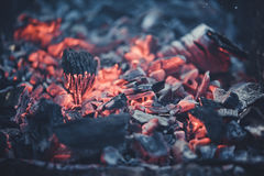 Smouldering coals at barbeque campfire. Smouldering coals at night ,Decaying charcoal, barbeque season Stock Images