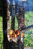 Smouldering tree trunk burned Royalty Free Stock Photo