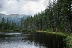 Smreczynski Staw, lago in montagne di Tatra Immagine Stock