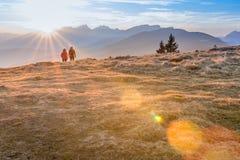 Smrekovec Slovenien Fotografering för Bildbyråer