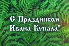 Smsa i ryss - med en ferie av Ivan Kupala Rysk ferie Nya gröna ormbunkesidor på suddighetsbakgrund i trädgården Textur Royaltyfri Fotografi