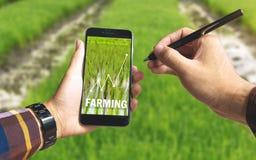 Smsar den smarta telefonen för handinnehavet och den elektroniska pennan med lantbruk arkivbild