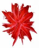 Smudged czerwona pomadka odizolowywająca Zdjęcia Royalty Free