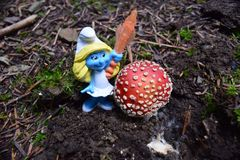 A smurf next to Amanita muscaria, commonly known as the fly agaric stock image