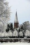 Smutny białej, popielatej zimy scenary jawny park i Zdjęcia Royalty Free