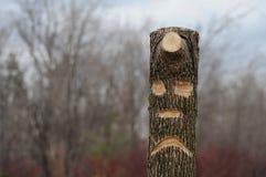 Smutny drzewo Obraz Royalty Free