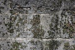 Smuts, smuts och konkreta yttersidor, betonggolv Arkivfoton