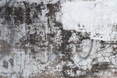 Smutsa ner cementväggen Arkivbild