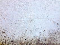 Smutsa ner cementväggen Arkivfoton