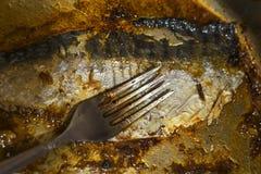 Smutsa ner den odiskade pannan, når du har lagat mat fisken Royaltyfri Fotografi