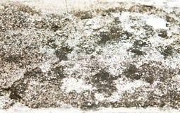 Smutsa ner golvet Arkivbild