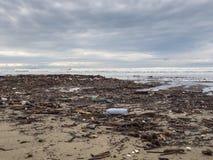 Smutsa ner stranden Fotografering för Bildbyråer
