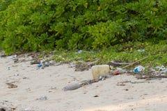 Smutsa ner stranden på ön av lilla Andaman i Arkivbild