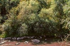 Smutsa ner vatten med stenar av floden Derbent i den Lori regionen av Armenien Royaltyfri Bild