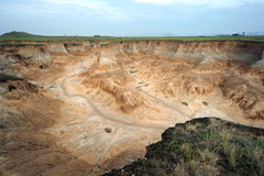 Smutsa skogen Fotografering för Bildbyråer