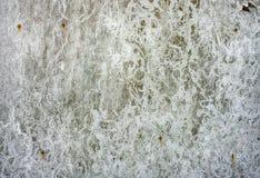 Smutsig abstracbakgrund Arkivbilder