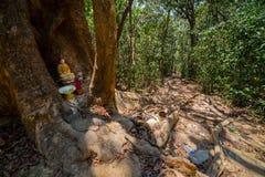 Smutsig bana och liten tempel i djungeln royaltyfri fotografi
