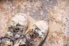 Smutsig färg för gammala skor Fotografering för Bildbyråer