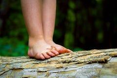 Smutsig fot som balanserar på en journal Arkivfoton