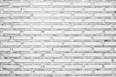 Smutsig gammal vit tegelstenvägg Arkivfoto