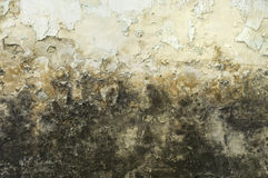 smutsig möglig gammal vägg Arkivfoton