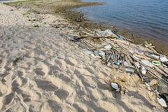 smutsig strand Royaltyfri Bild