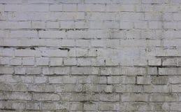 Smutsig tegelstenvägg för bakgrund arkivbild