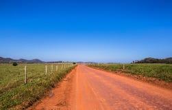 Smutsig väg i det gröna fältet Arkivbild
