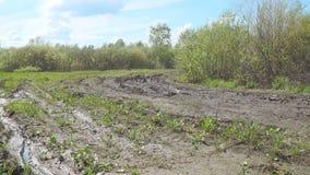Smutsig väg i skog stock video