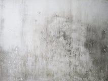 Smutsig vit vägg Royaltyfri Bild