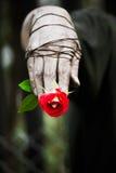 Smutsiga händer binds upp med rosor bundet upp med förälskelse royaltyfria foton