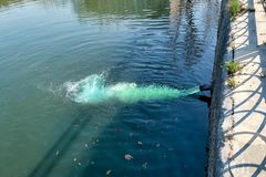 Smutsiga kemiska flöden för förorenat vatten in i floden royaltyfri foto