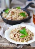 Smutsiga ris med jordnötkött arkivbild
