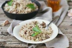 Smutsiga ris med jordnötkött royaltyfria bilder