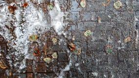 Smutsiga spår av snö på asfalten, den första snön, i staden Dålig ekologi, smutsar ner snö Fotspår av skor på arkivbild