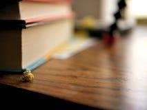 Smutsigt belamrat träskrivbord med boken och legitimationshandlingar royaltyfria foton