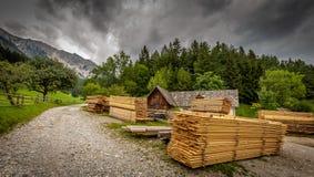 Smutsigt grus, bana runt om sågverket under Schneeberg med högar av trä royaltyfri bild