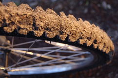 smutsigt mountainbikegummihjul för closeup Arkivfoto