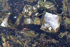 Smutsigt vatten, avskrädemossa i kloaken, ruttet förlorat vatten, industriell vattenförorening, avfalls i vattenmiljöproblemet royaltyfri foto