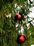 Smycka på jultreen royaltyfri fotografi