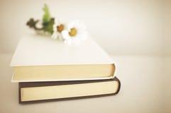 Smyckad vit bok Arkivfoto