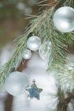 Smyckar mousserar den levande snöig filialen för evergreen med julmetallsilver och stjärnan arkivfoto