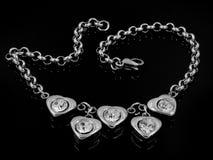 Smycken - armband - rostfritt stål Royaltyfria Bilder