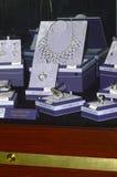 Smycken 2014 för hus för smycken för JUNWEX-Moskvaestet Halsband cirklar, örhängen Arkivbilder